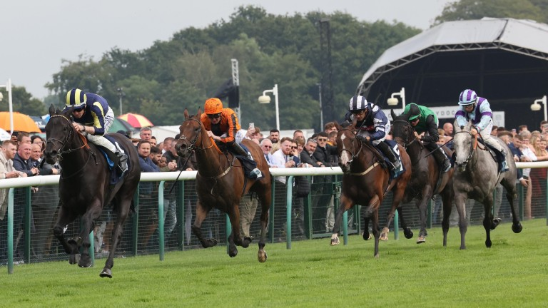 Waliyak and Jack Mitchell see off rivals to land the Listed Dick Hern Stakes