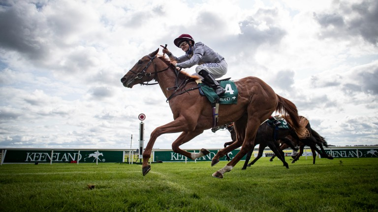 Ebro River: won the Keeneland Phoenix Stakes under a fine ride from Shane Foley