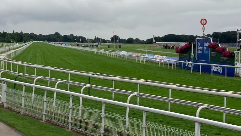 The home straight at York this morning on a cool and cloudy day on the Knavesmire
