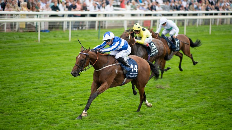 """Alastair Donald on Winter Power's autumn schedule: """"There's still three weeks after the Curragh until the Abbaye so there's no reason why she can't do both"""""""