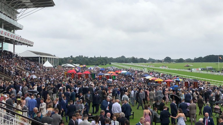Large crowds have been racing at courses such as York this summer