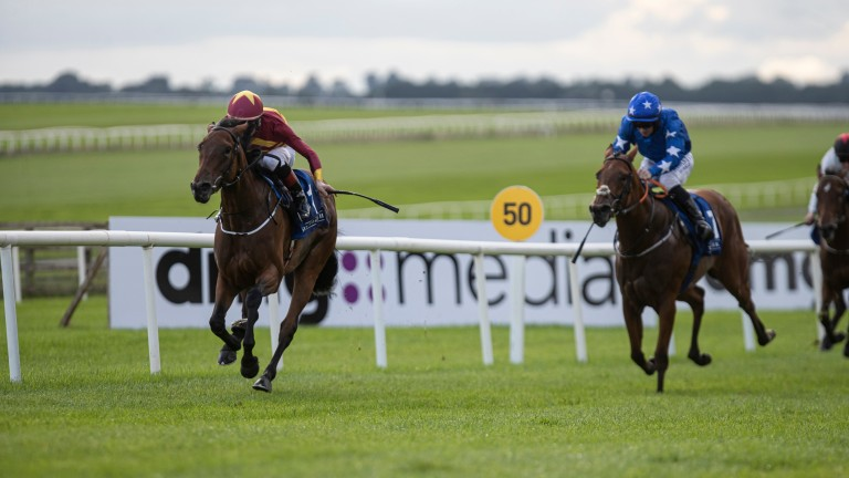 Agartha: leading contender in the Moyglare