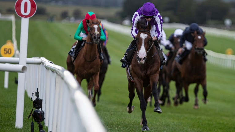 Point Lonsdale: maintained his unbeaten record in the Futurity Stakes last month
