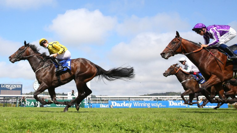 Perfect Power: could aim to cap a brilliant season off in the Middle Park Stakes