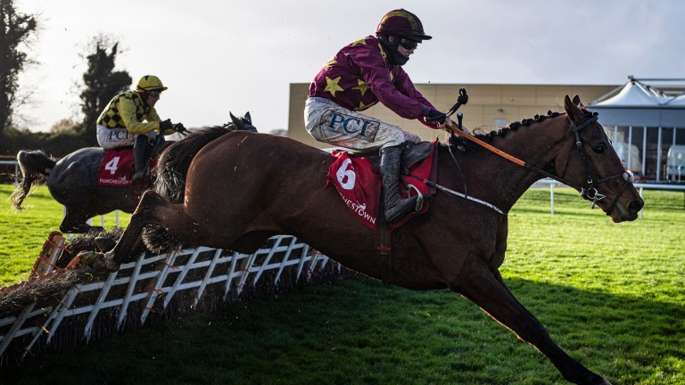 Holymacapony: favourite for the 2021 Albert Bartlett Novices' Hurdle before a couple of disappointing efforts