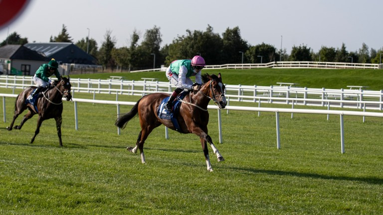 Sacred Bridge: the top-rated Irish two-year-old filly after victory in the Round Tower Stakes