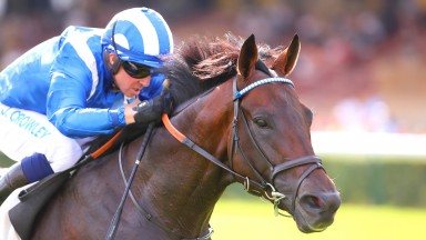 Baaeed lands the Prix du Moulin in impressive style to get off the mark in the Tote Ten To Follow competition