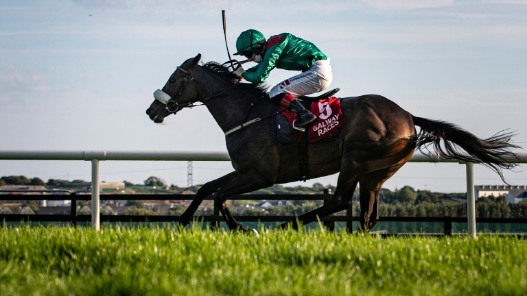 Haparanda and Colin Keane win the Ardilaun Hotel Oyster Stakes at Galway