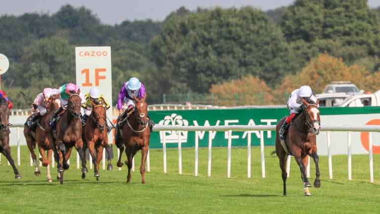 Free Wind puts daylight between herself and her rivals in the Group 2 Park Hill Stakes