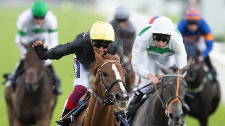 Stradivarius: strolled to a 19th career victory in the Doncaster Cup