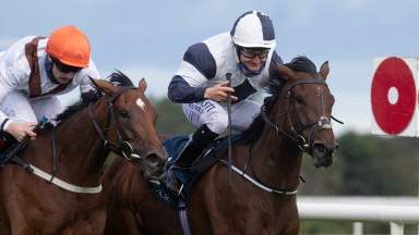 No Speak Alexander and Shane Foley winners of the Coolmore Matron Stakes (Group 1).Leopardstown Racecourse.Photo: Patrick McCann/Racing Post11.09.2021