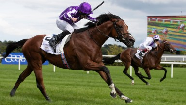 St Mark's Basilica ridden by Ryan Moore wins the Irish Champion Stakes (Group 1).Leopardstown Racecourse.Photo: Patrick McCann/Racing Post11.09.2021