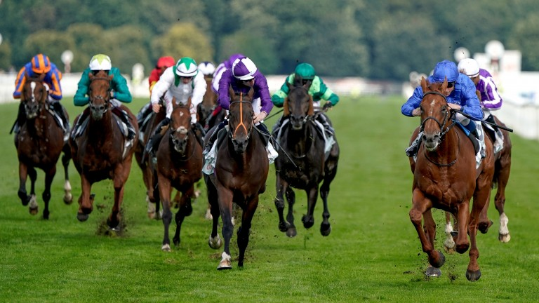 Hurricane Lane (blue, right) won the St. Leger in Doncaster