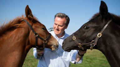General Manager Julian Dollar pictured with foals at Newsells Park StudRoyston 6.9.21 Pic: Edward Whitaker