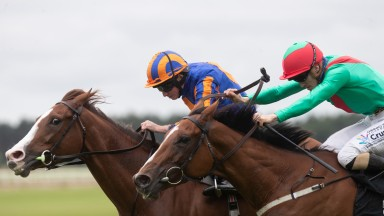 La Petite Coco: chinned Love at the Curragh on Sunday