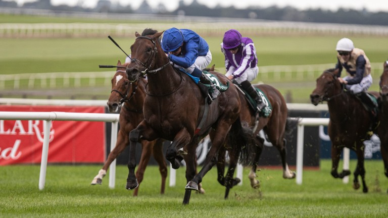 Native Trail: Ultramarine was fourth to the talented colt in the Goffs Vincent O'Brien National Stakes