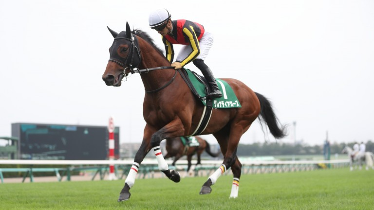 Grenadier Guards: ran well on Sunday but was unable to reel in the first two