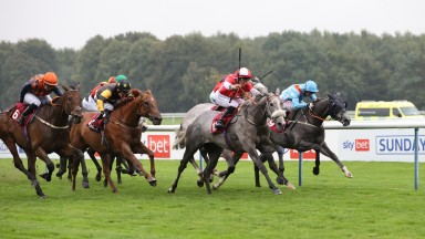 The last of the three Sky Bet Sunday Series fixtures took place at Haydock on Sunday