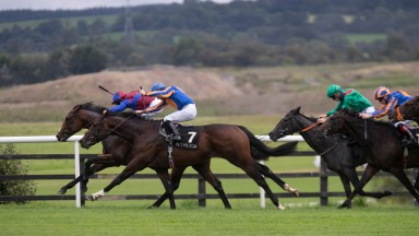 River Thames and Wayne Lordan wins the 7f maiden.Punchestown Racecourse.Photo: Patrick McCann/Racing Post14.09.2021