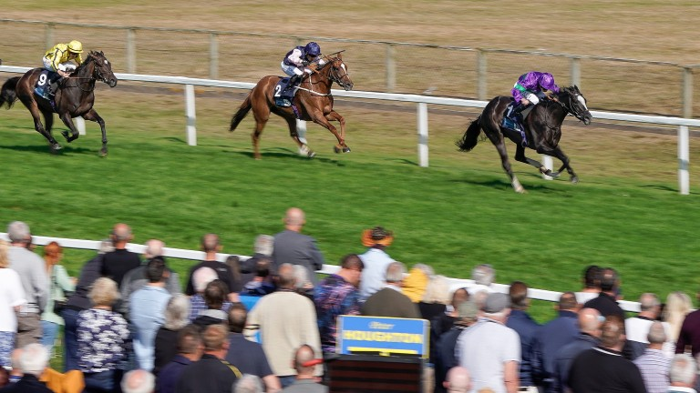 Ville De Grace and Ryan Moore (purple) surge clear for victory in Yarmouth's feature race of the year