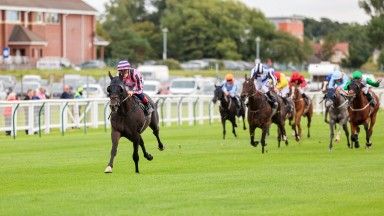 CHICHESTER Ridden by Callum Rodriguez wins at Ayr 16/9/21Photograph by Grossick Racing Photography 0771 046 1723