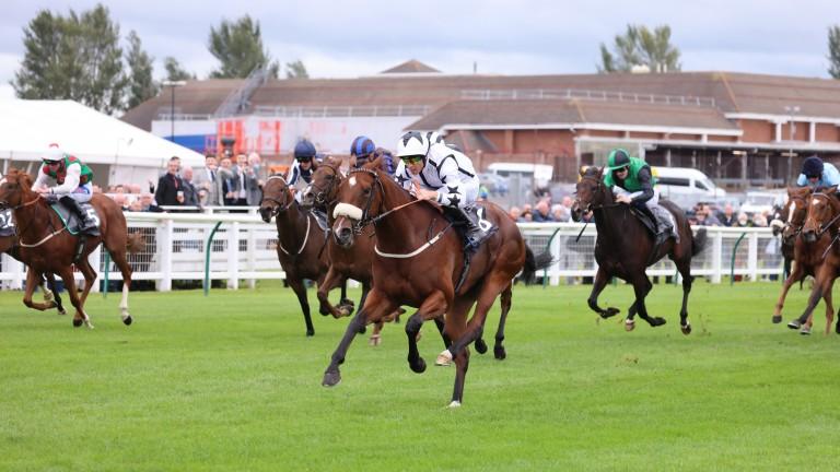 Dandalla: Royal Ascot heroine bounced back to winning ways at Ayr on Friday