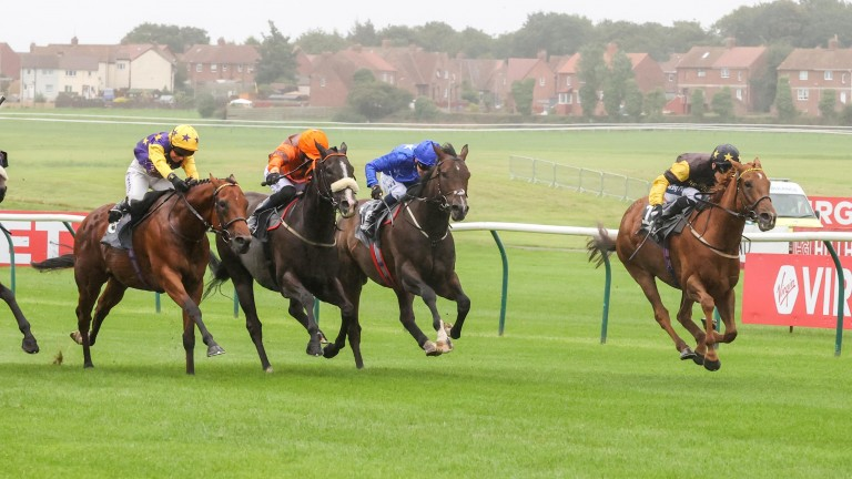 Call Me Ginger provided Mulrennan with a double when landing the Ayr Bronze Cup