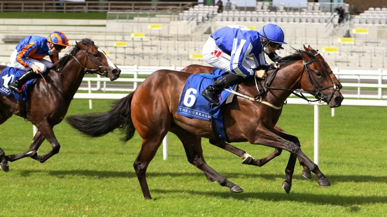 Head Mistress: wins at Down Royal and the Curragh