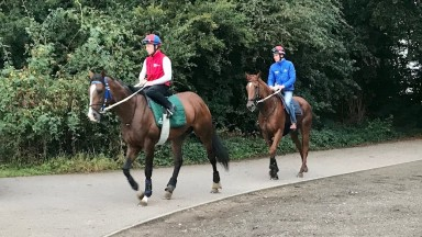 War Leader and Saffron Beach (Adam Kirby) head out to exercise