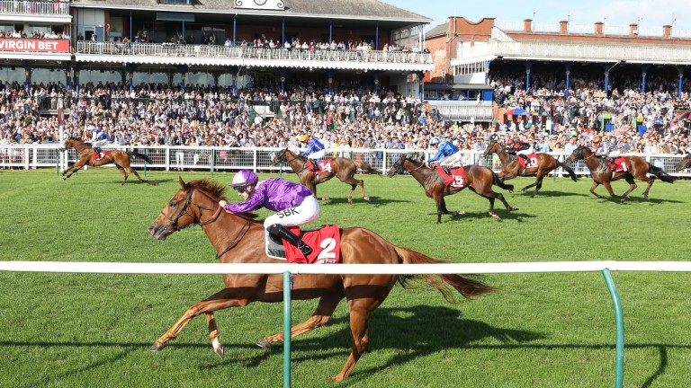Bielsa (far) leads home Great Ambassador (near) in the finish to the Ayr feature