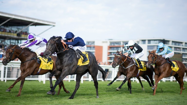 Wings Of War (near) runs down Hierarchy to win the Group 2 Mill Reef Stakes