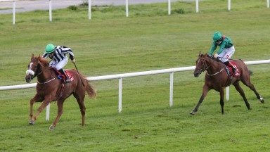 Astadash and Wayne Lordan storm clear to land the feature Fillies Stakes at Gowran on Saturday