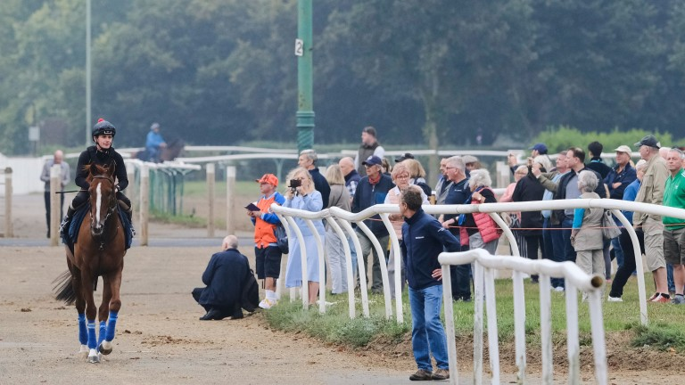 Stradivarius was a big draw with the crowds on Warren Hill