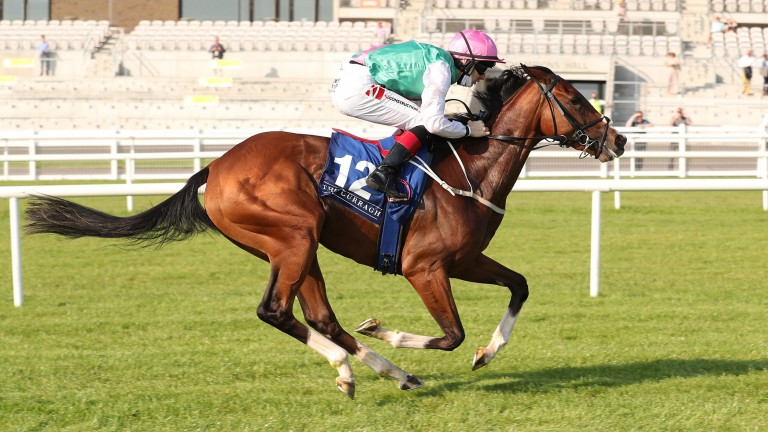 Sacred Bridge: bidding to make it five wins from five in Saturday's Cheveley Park Stakes