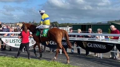 Autumn Evening and Sean O'Keeffe return after winning the Liam Healy Memorial Lartigue Hurdle at Listowel