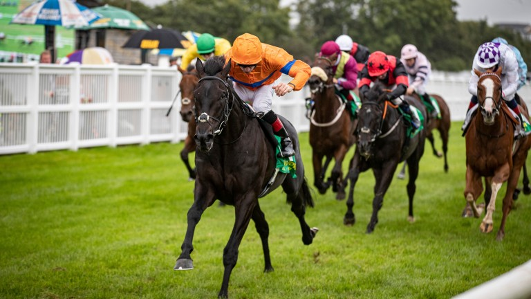 Visualisation and Declan McDonogh land the feature Listowel Stakes on Tuesday