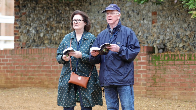 Caitriona and John Oxx compare a yearling with the catalogue page