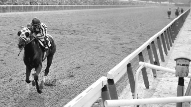 Secretariat raced into the ever glow of immortality in the 1973 Belmont Stakes. His victory, by one of the widest margins in the history of the American turf – 31 lengths ahead of his nearest challenger and in a world record time for the 1 1/2 miles dis