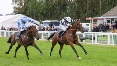 Go Another One (right) beats stablemate Roi De Dubai in the feature £25,000 handicap chase