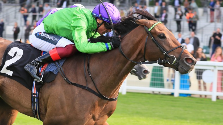 Uncle Bryn's position as favourite for the bet365 Cambridgeshire has come under threat from stablemate Magical Morning