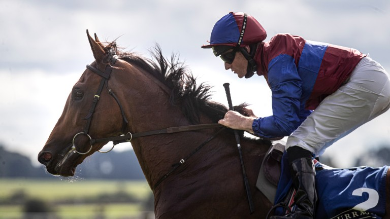 Straightforward success: the son of Camelot bounded clear of his rivals at the Curragh