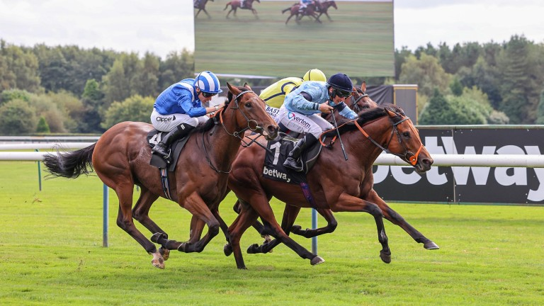 Nugget: could be partnered by Ryan Moore in the Balmoral Handicap