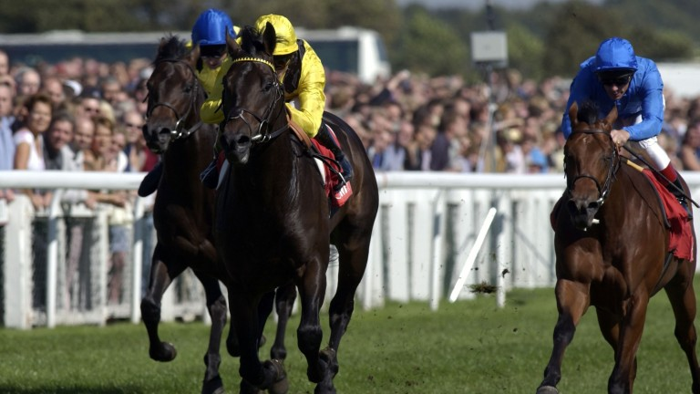 Kheleyf (yellow) seen in early winning form at Doncaster