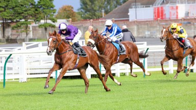 MR ALAN ridden by Rossa Ryan wins at AYR 28/9/21Photograph by Grossick Racing Photography 0771 046 1723