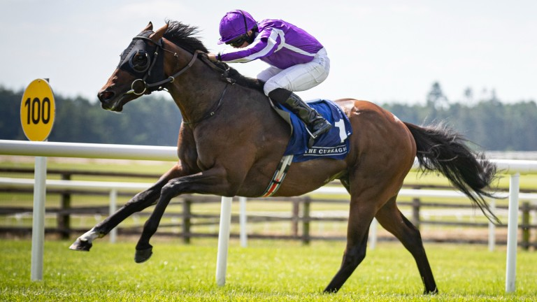 Order Of Australia: returned to Keeneland for the first time since Breeders' Cup glory