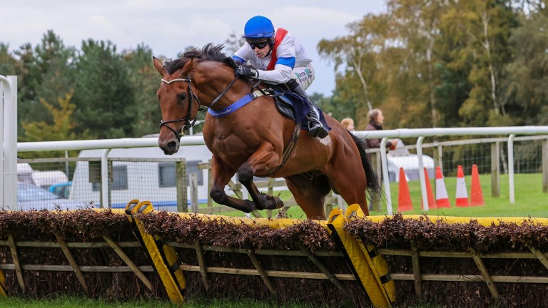 It's Good To Laugh continues a perfect start to hurdling career