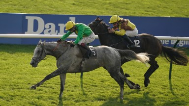 Buzz and Oisin Murphy get the better of Burning Victory and William Buick in the Cesarewitch