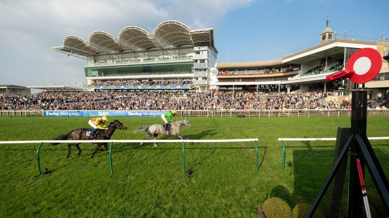 Buzz gets the better of Burning Victory to land the Cesarewitch