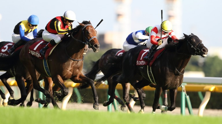 Schnell Meister (all-white cap) finishes fast to catch Danon Kingly (right) at Tokyo