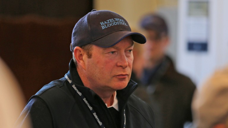"""Adrian O'Brien: """"I'm very flattered that Juddmonte have bought a horse of this quality from our farm"""""""